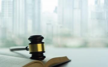 « Contournement des honoraires de l'agent immobilier et indemnisation », Caroline Tomasi-Serre, avocate au Barreau de Paris
